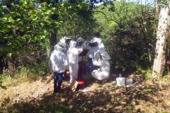 controle-des-ruches09-2018