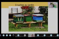Visioconférence Philippe 3 ruches au jardin