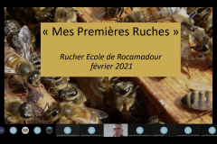 Visioconférence Philippe mes premières ruches