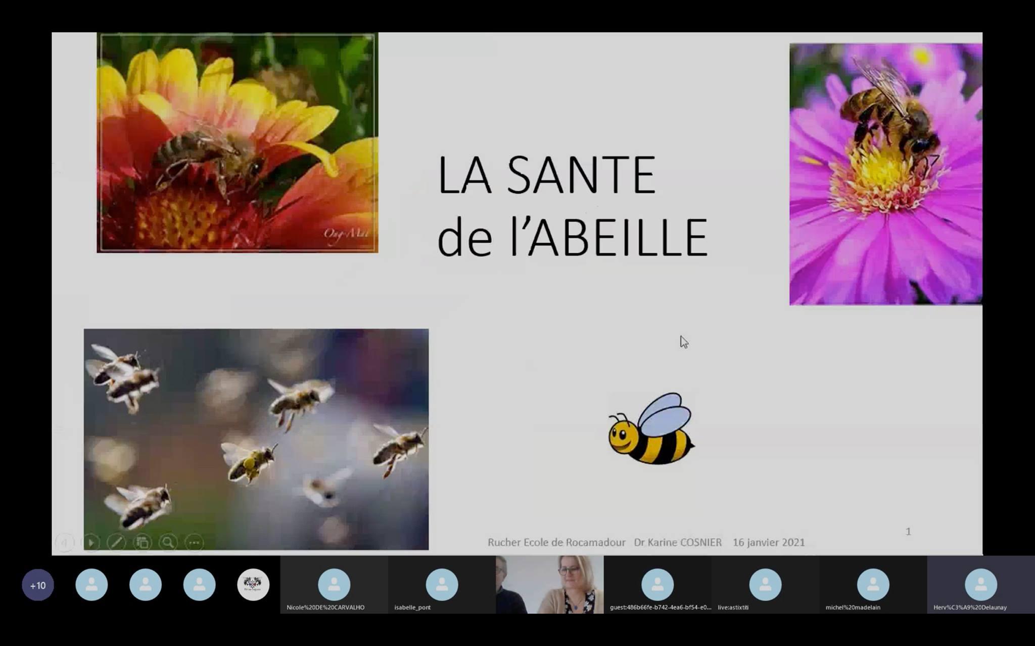 Visioconférence Karine santé biologie de l\'abeille