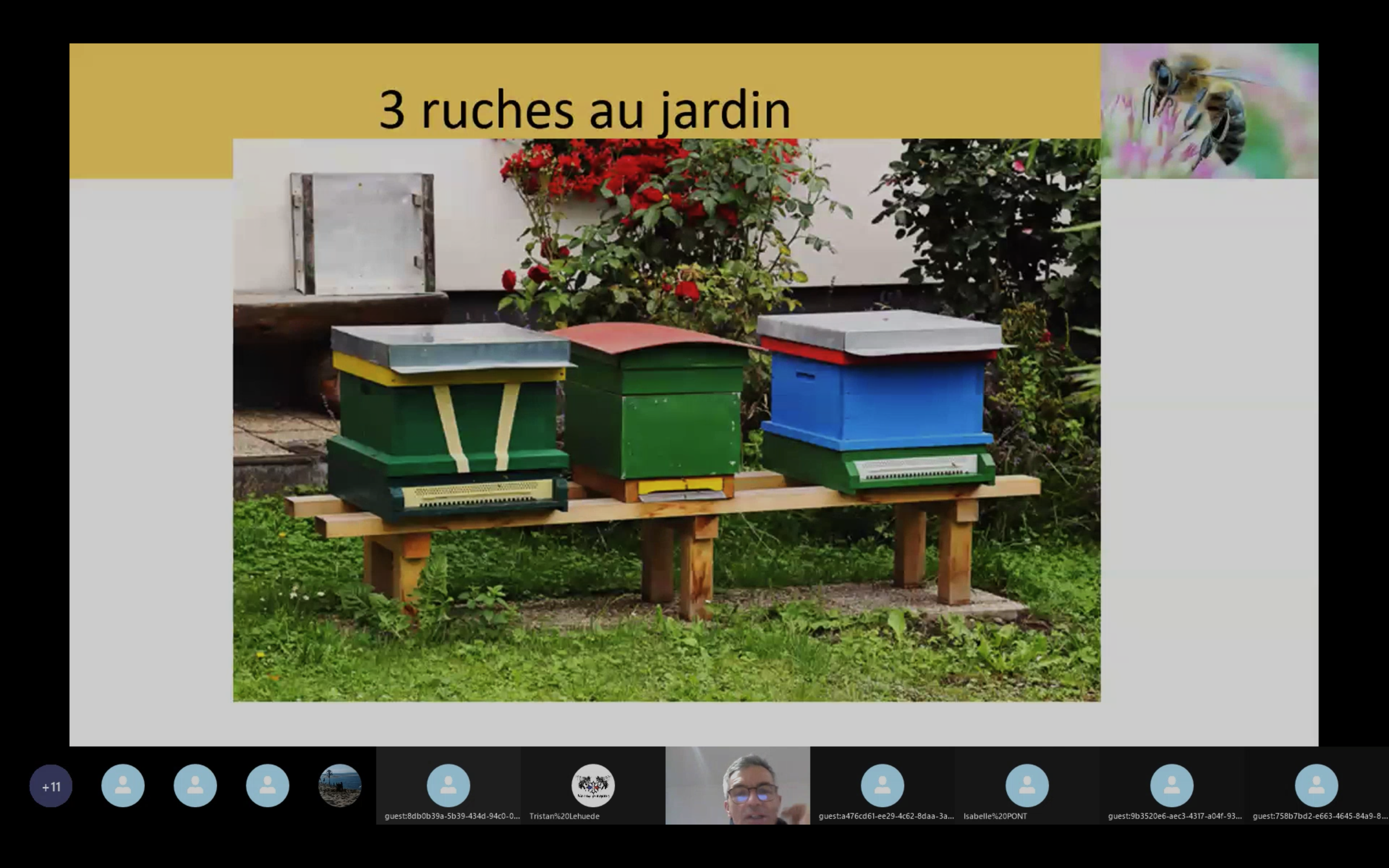 Visioconférence Philippe 3 ruches au jardin