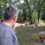 Olivier Du Peloux et ses ruches