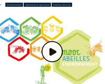 MOOC FUN Abeilles & Environnement